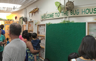 room with families in it - Welcome to the Bug House is written in green on the wall